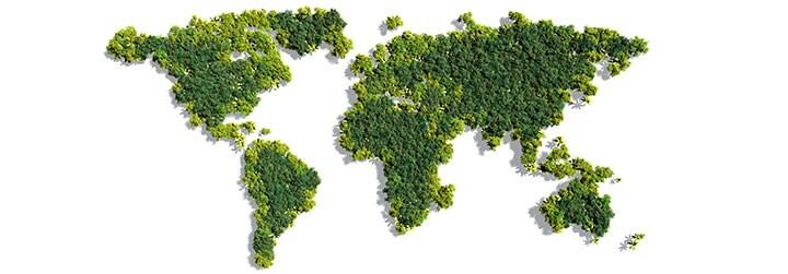 Environmental Compliance Organization
