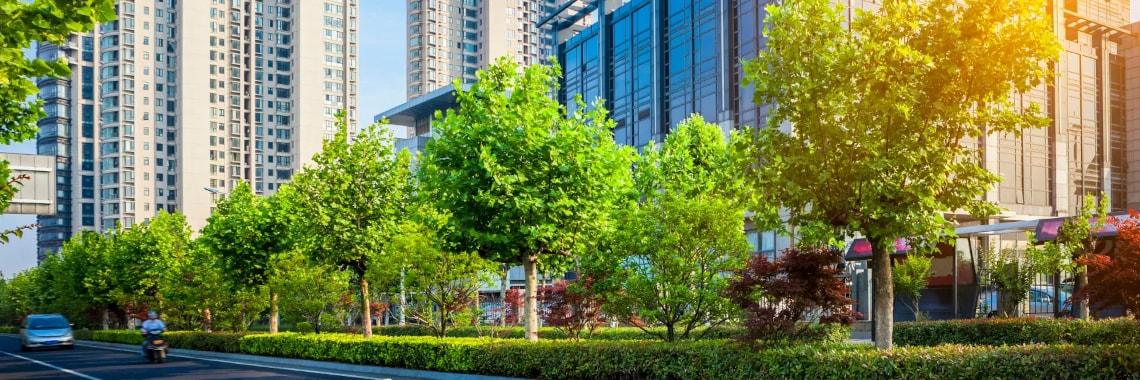 Green Smart City Smart City